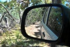 Réflexions dans un miroir de vue de côté d'une conduite dans le buisson Photo stock