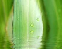 Réflexions de centrale et d'eau Photographie stock