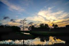 réflexions de coucher du soleil dans le marais image libre de droits