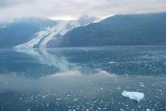 Réflexions de glace Images stock