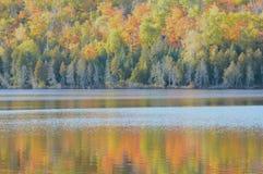 Réflexions de lac hare - réserve forestière supérieure Photographie stock