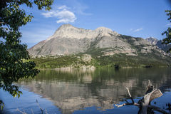 Réflexions de lac Waterton photos libres de droits