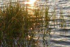 Réflexions de lumière du soleil Photographie stock libre de droits