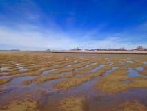 Réflexions de marée basse photo stock