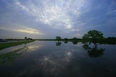Réflexions de matin dans le lac Image libre de droits