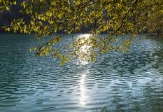 Réflexions de matin de lacs Plitvice photographie stock libre de droits