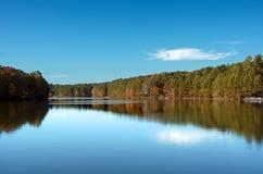 Réflexions de pin de lac Image libre de droits