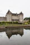 Réflexions de piscine de château de La Roche Courbon Images libres de droits