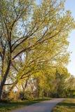 Réflexions de printemps dans un bel espace public photographie stock libre de droits