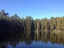 Réflexions de rivière Photos stock