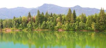 Réflexions de rivière de Cowlitz Photo stock