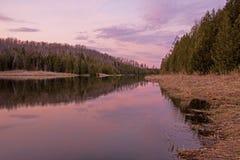 Réflexions de soirée sur la rivière de pin Image libre de droits