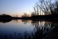 Réflexions des arbres dans l'eau de lac Images libres de droits