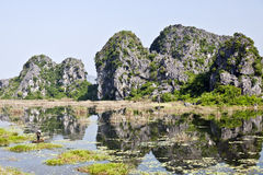 Réflexions des réserves naturelles de Van Long Photographie stock libre de droits