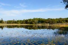 Réflexions du sud de lac florida photographie stock