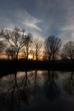 Réflexions et coucher du soleil d'arbres Photos libres de droits