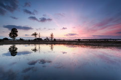 Réflexions pourpres de lever de soleil dans le lac Photographie stock