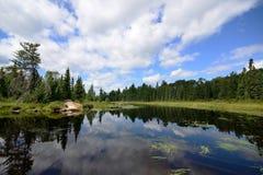 Réflexions sur une rivière de région sauvage Image stock