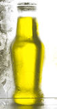 réfrigérateur de bouteille Photographie stock libre de droits