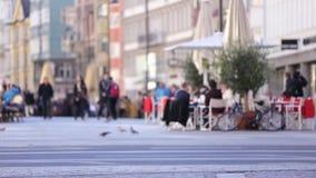 Réfugié priant pour l'aide banque de vidéos
