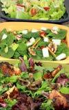 Régal de trois salades Photos libres de droits
