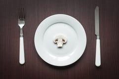 Régime alimentaire cru de régime strict Photo libre de droits
