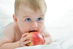Régime de fruit Photographie stock