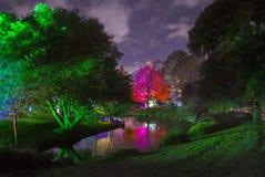 Région boisée enchantée en parc de Syon images libres de droits