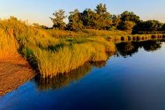 Région de baie avec des herbes et réflexion de l'eau outre de dock dans l'été Photos stock