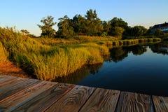 Région de baie avec des herbes et réflexion de l'eau outre de dock dans l'été Photographie stock libre de droits