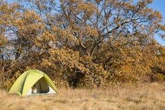 Région de camping avec les tentes multicolores dans la forêt Photographie stock libre de droits