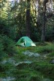 Région de camping avec les tentes multicolores dans la forêt Image libre de droits