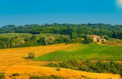 Région de Chianti photo libre de droits
