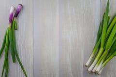Région de copie de bordure d'oignons blancs sur le fond en bois photo libre de droits