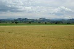 région de l'Italie Lombardie images stock
