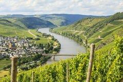 Région de la Moselle photographie stock libre de droits
