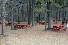Région de pique-nique avec des pins Photographie stock libre de droits