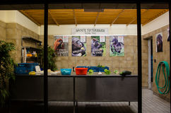 Région de préparation alimentaire chez Berlin Zoo photographie stock