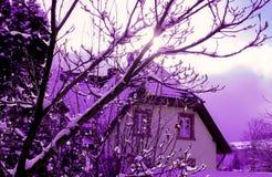 Région de Schwarzwald, Fribourg Photos libres de droits