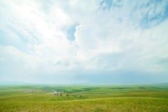 Région de steppe d'Ulagai Photo libre de droits