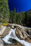 Région de traînée d'automne de queue de cheval, le lac Tahoe Photographie stock