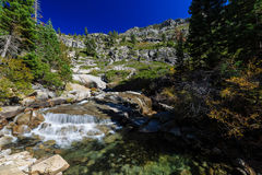 Région de traînée d'automne de queue de cheval, le lac Tahoe Image libre de droits