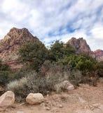Région nationale de conservation de roche rouge, Nevada, Etats-Unis image libre de droits