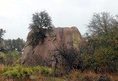 Région naturelle enchantée d'état de roche dans le jour pluvieux et brumeux images libres de droits