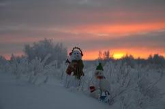 Région polaire Photo libre de droits