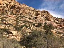 Région rouge de conservation de canyon de roche, Nevada, Etats-Unis Photographie stock libre de droits