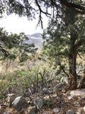 Région rouge de conservation de canyon de roche, Nevada, Etats-Unis Photo libre de droits