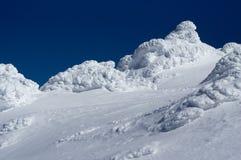 Région sauvage d'hiver Photographie stock libre de droits