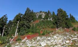 Région sauvage de Baker de bâti avec des couleurs de chute Image stock
