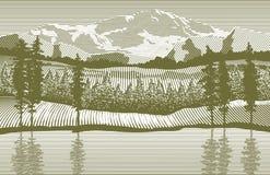 Région sauvage de gravure sur bois illustration stock